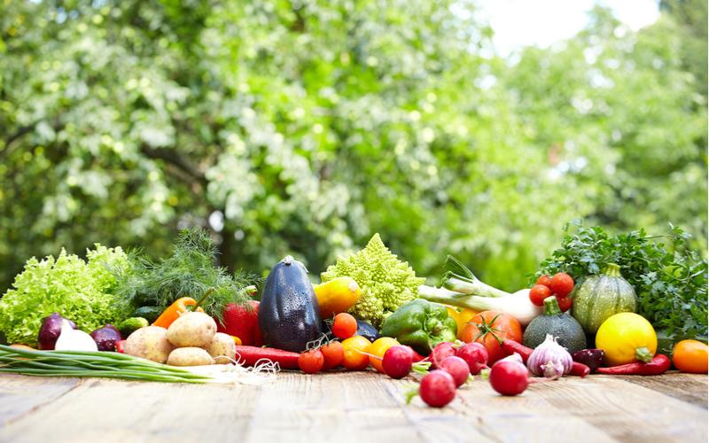 第5位:家庭菜園・園芸