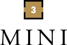 3.MINI